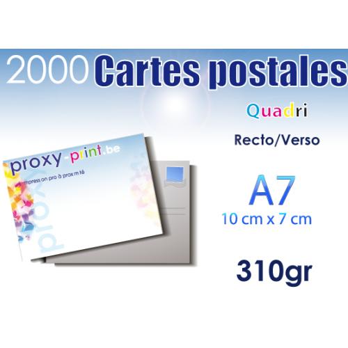 2000 Cartes postales - 310 Gr