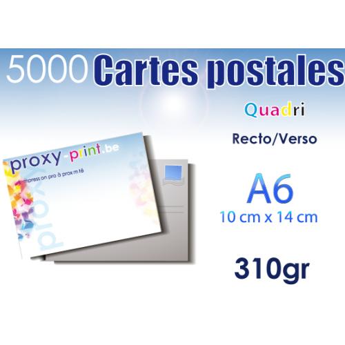 5000 Cartes postales - 310 Gr